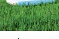 Catálogo Cotopur 2013